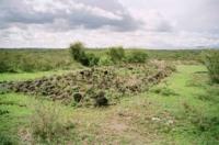 The Laetoli Site